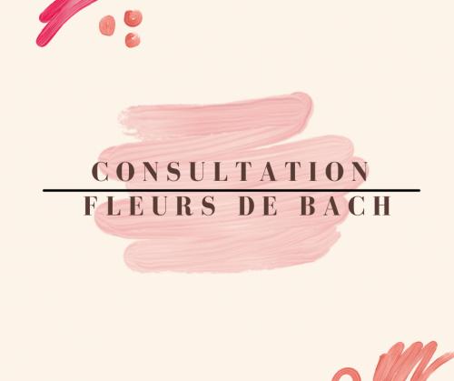 Consultation Fleurs de Bach cabinet ou en ligne